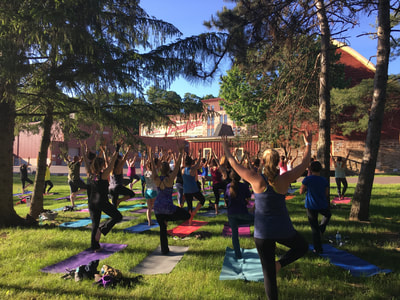 Beer and Yoga at the Leinie Lodge with Latitude 44